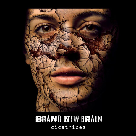 brabnd new brain cover 22581 n